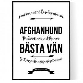 Livet Med Afghanhund Poster
