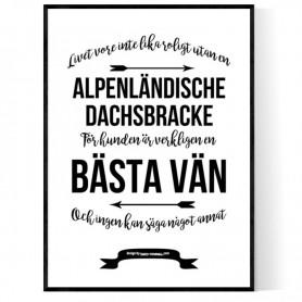 Livet Med Alpenländische Dachsbracke Poster