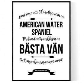 Livet Med American Water Spaniel Poster
