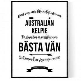 Livet Med Australian Kelpie Poster