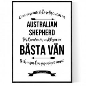 Livet Med Australian Shepherd Poster