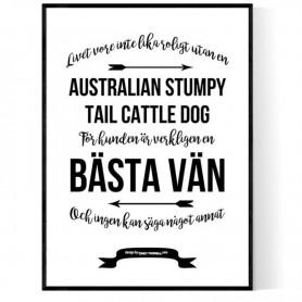 Livet Med Australian Stumpy Tail Cattle Dog Poster