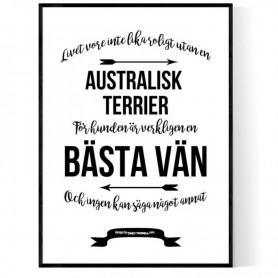 Livet Med Australisk Terrier Poster
