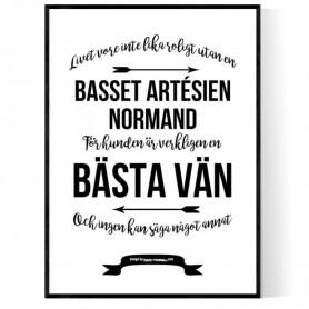 Livet Med Basset Artésien Normand Poster