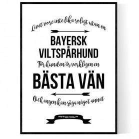 Livet Med Bayersk Viltspårhund Poster