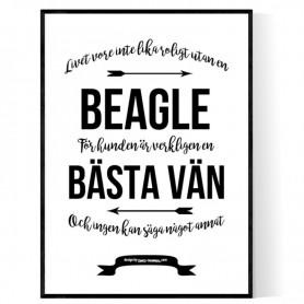 Livet Med Beagle Poster