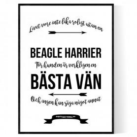 Livet Med Beagle Harrier Poster