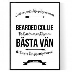 Livet Med Bearded Collie Poster