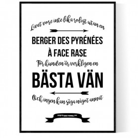 Livet Med Berger Des Pyrénées à Face Rase Poster