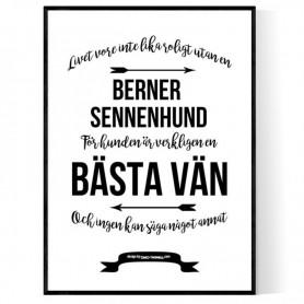 Livet Med Berner Sennenhund Poster