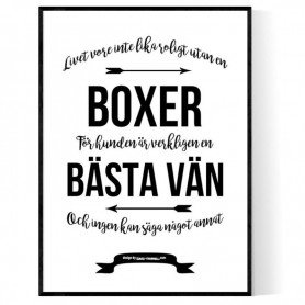 Livet Med Boxer Poster