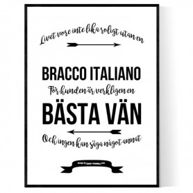 Livet Med Bracco Italiano Poster
