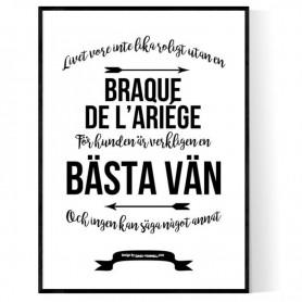 Livet Med Braque de l'ariége Poster