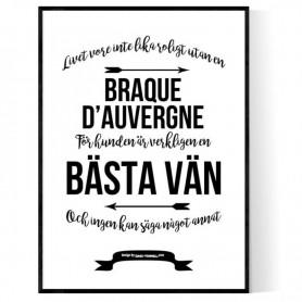 Livet Med Braque d'auvergne Poster