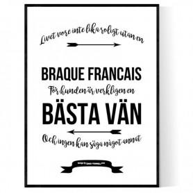 Livet Med Braque Francais Poster