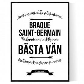 Livet Med Braque Saint-Germain Poster