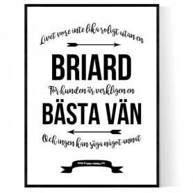 Livet Med Briard Poster