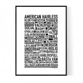 American Hairless Terrier Poster