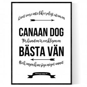Livet Med Canaan Dog Poster