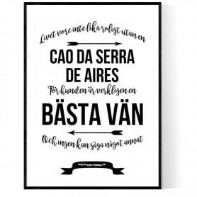 Livet Med Cao da Serra de Aires Poster