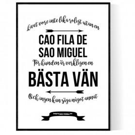 Livet Med Cao Fila de Sao Miguel Poster