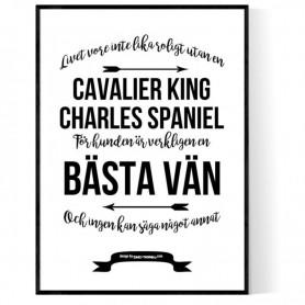 Livet Med Cavalier King Charles Spaniel Poster