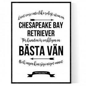 Livet Med Cheasapeake Bay Retriever Poster