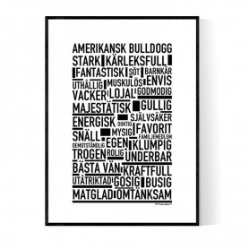 Amerikansk Bulldogg Poster