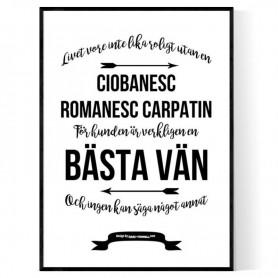 Livet Med Ciobanesc Romanesc Carpatin Poster